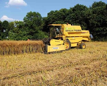 New Holland TC59 Bizon