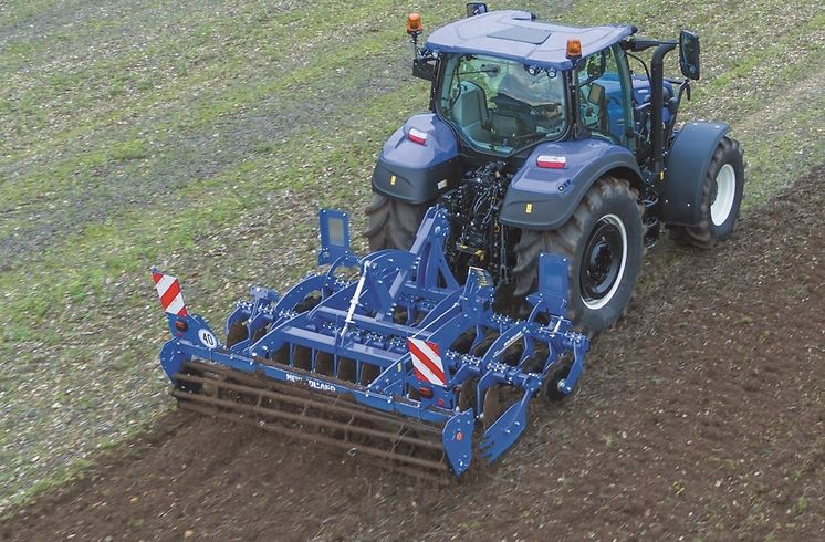 New Holland, Maschio
