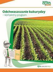 Odchwaszczanie kukurydzy – kompletny program