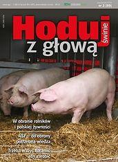 Hoduj z Głową Świnie
